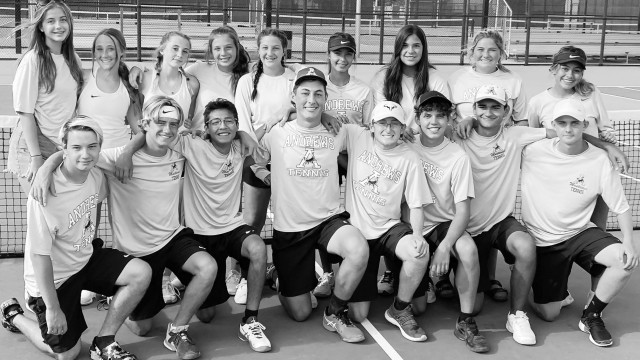 Duzan's team tennis wins two playoff rounds