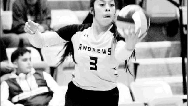 Vasquez has 9 kills in Fillies 4th league win